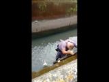 Сотрудник полиции спас собаку от гибели! Респект - герою!!