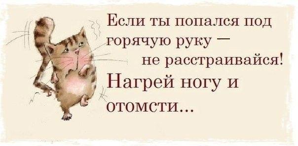 https://pp.vk.me/c616928/v616928952/10572/heKXrrfW-aE.jpg