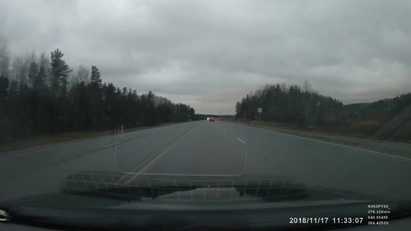 Торопыга на трассе Новодвинск-Архангельск