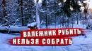 Валежник все в лес собирать дрова Закон о валежнике 2019 Рубить нельзя собирать бесплатно