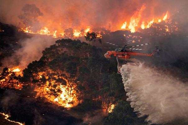 NASA: дым от австралийских пожаров совершит минимум один оборот вокруг Земли По данным космического агентства, к 8 января дым уже преодолел полпути. Попав в стратосферу, дым может
