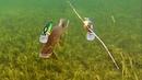 Pike attack Mike Ricky fishing lures. Hechtangeln. Gäddfiske. Pesca del lucio Рыбалка щука атакует
