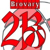 Brovary Basketball