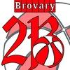 Brovary Basketball