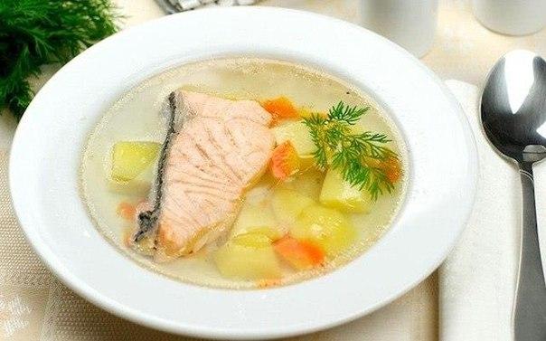 Рецепт рыбного супа из белой рыбы