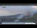 Огненная западня: поисково-спасательные операции в Греции идут без остановки