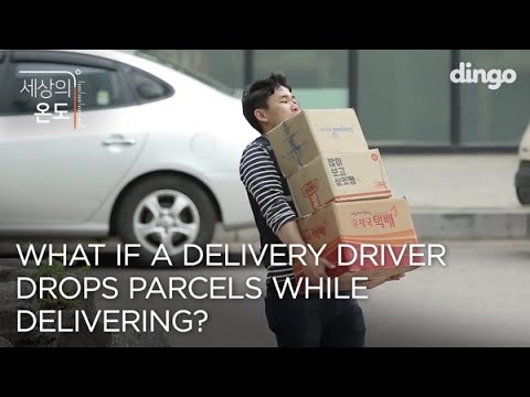 What If A Delivery Driver Drops Parcels While Delivering? ENG SUB • dingo kdrama