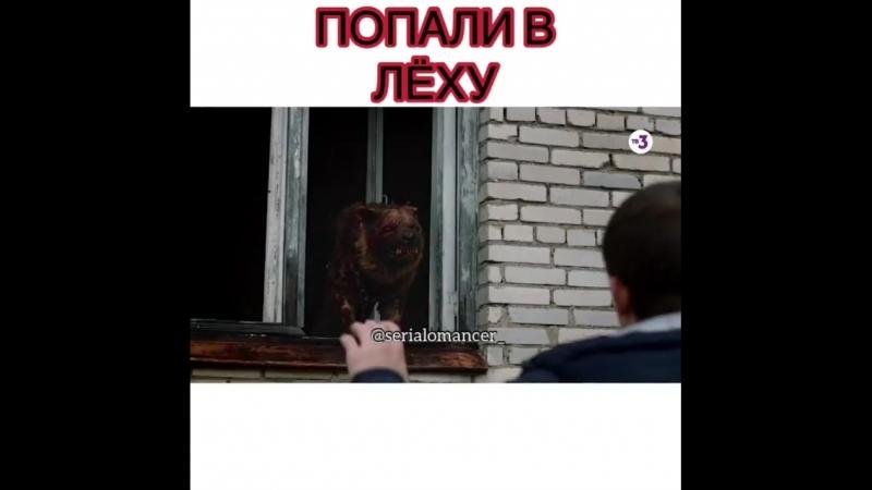 Попали в Лёху - ЧЗО