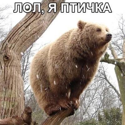 Ирина Мусова, 25 ноября 1986, Саратов, id156966127