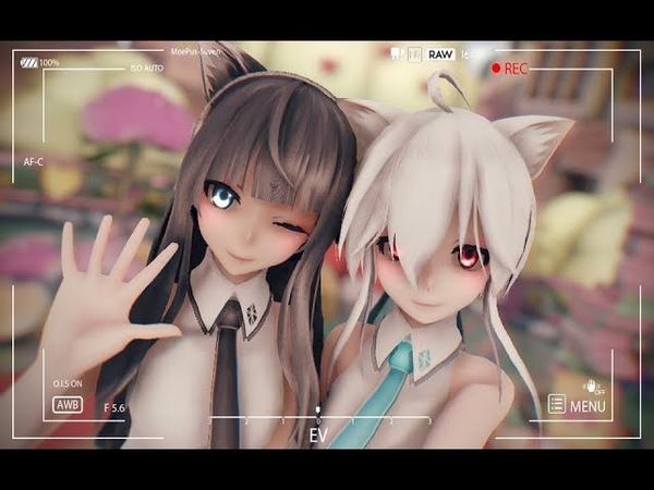 【MMD朱字号】【萌女友系列】笨蛋~ 想抱走我嘛!!(君の彼女)(Haku、Lan)