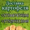 Доставка картофеля в Минске. Купить картофель
