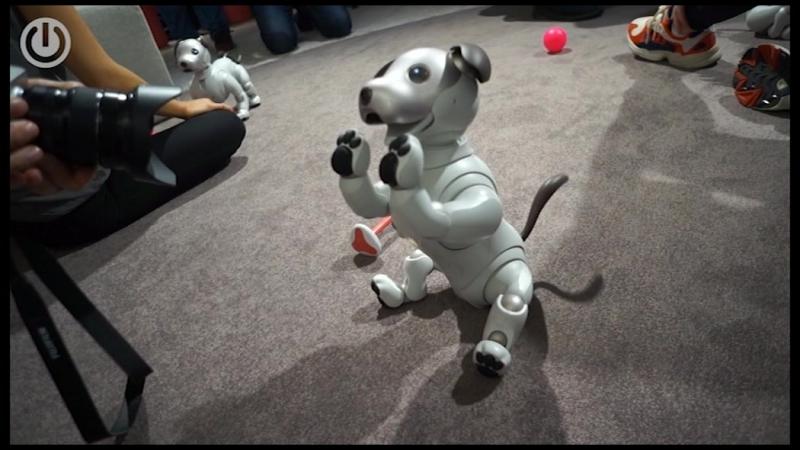 IFA 2018 Робот с ИИ Aibo ERS-1000
