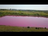 Розовые озера Самарская обл. Кинельский р-он. 4k
