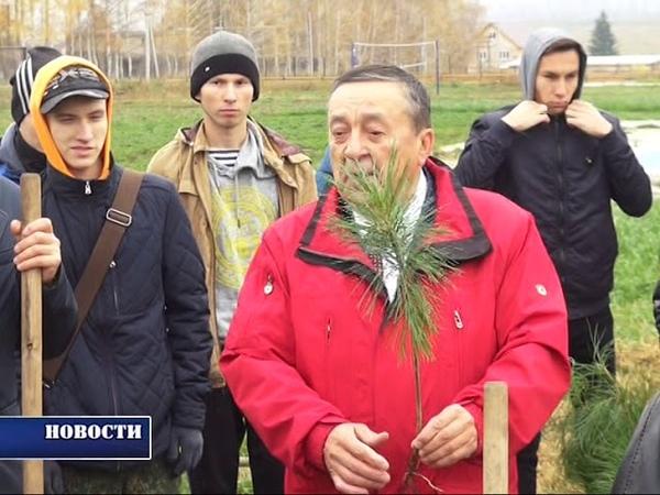 В ОЦ Салихово открыли метеостанцию и высадили кедры