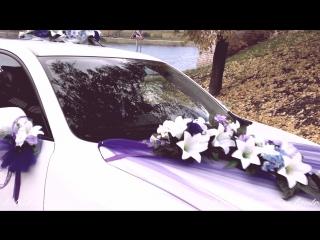 Фиолетовый комплект (ВИДЕООБЗОР). Аренда украшений на свадьбу в Пскове