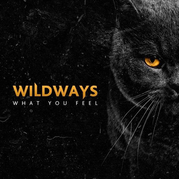 Wildways дискография скачать торрент