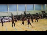 Feel It Still - Portugal. The Man - Dance Company 2017