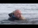 собака замерзала в холодной воде теряя силы и надежду на спасение пока не появился