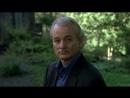 Сломанные цветы Broken Flowers 2005 Джим Джармуш драма мелодрама комедия детектив