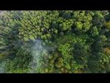 Антитла - TDME __ Lyric video