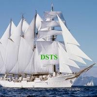 Логотип DSTS Consulting - инвестиции и личный капитал