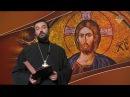Грехи, которые вы замечаете в ближних, очевидно, живут в вас самих Евангелие дня