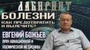 ЛАБИРИНТ | Евгений Божьев | Болезни. Как предотвратить и вылечить?