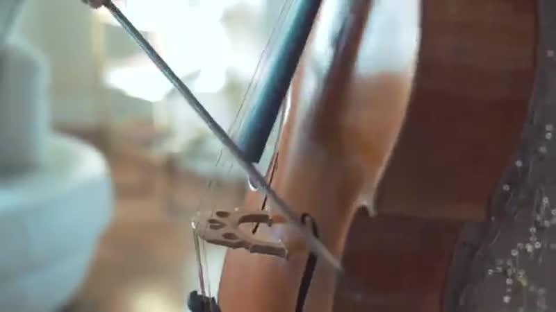 Ed Sheeran - Perfect (Amadeus violin cover instrumental)