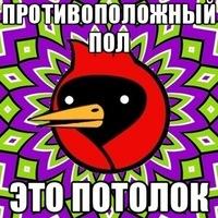 Кирилл Хохлов, 9 октября 1999, Омск, id137926817