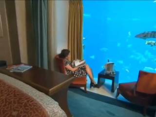 И такое есть - квартира в океане - vk.com/p.obrazovanie