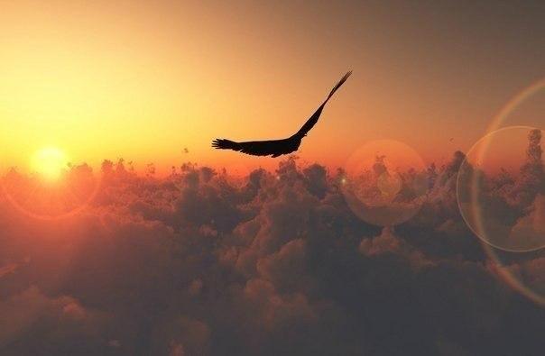 очутиться в раю - Страница 2 DbgOIlJCYYU