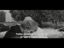 Andrei Rublev by Andrei Tarkovsky