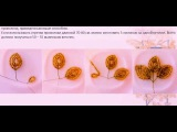 Бисероплетение Пано из бисера своими руками мастер класс видео схема плетения