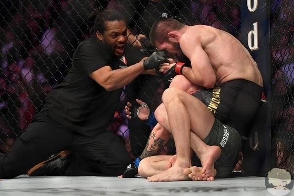 Чемпион UFC в лёгком весе Хабиб Нурмагомедов провёл свою первую защиту титула. Дагестанец одержал досрочную победу над ирландцем Конором Макгрегором, заставив того сдаться после удушающего приёма в четвёртом раунде. Для непобеждённого российского бойца эт