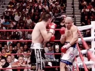 Мигель Котто-Антонио Маргарито (первый бой - 2008 год )