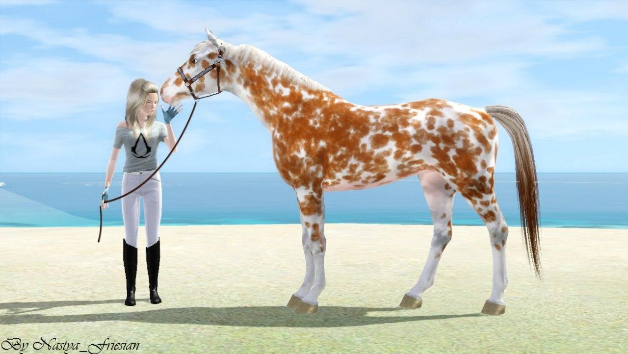 Регистрация лошадей в RHF 1.1 - Страница 2 T-PezT5rPbU