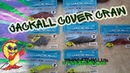Jackall Cover Craw / Baby Dragon