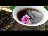 Иван чай, заготовка, ферментация, сушка!