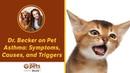 Астма у домашних животных симптомы причины и провоцирующие факторы Pet Asthma Symptoms Causes and Triggers