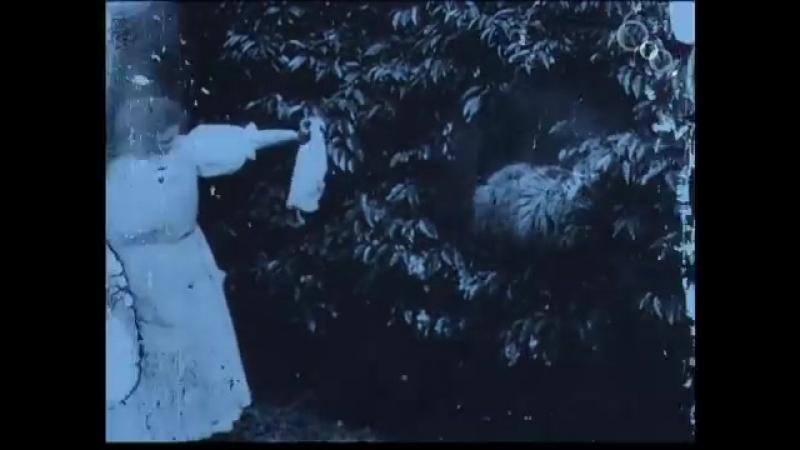 Первая экранизация Алисы в стране чудес,1903 год