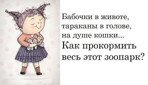 http://cs408124.vk.me/v408124820/11c5/SsYkDOdSQ54.jpg