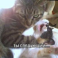 Саня Евсеев, 9 апреля , Киев, id161643704