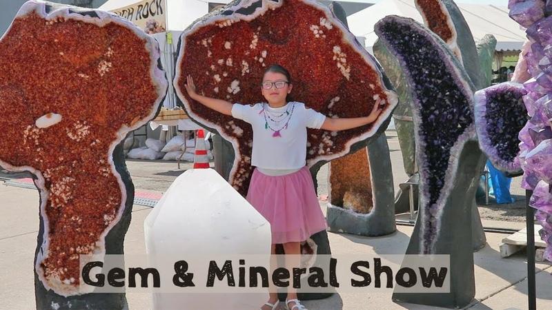 SPECTACULAR CRYSTALS at the Denver Gem Mineral Show | 2018 Preview | Amethyst Smoky Citrine Quartz