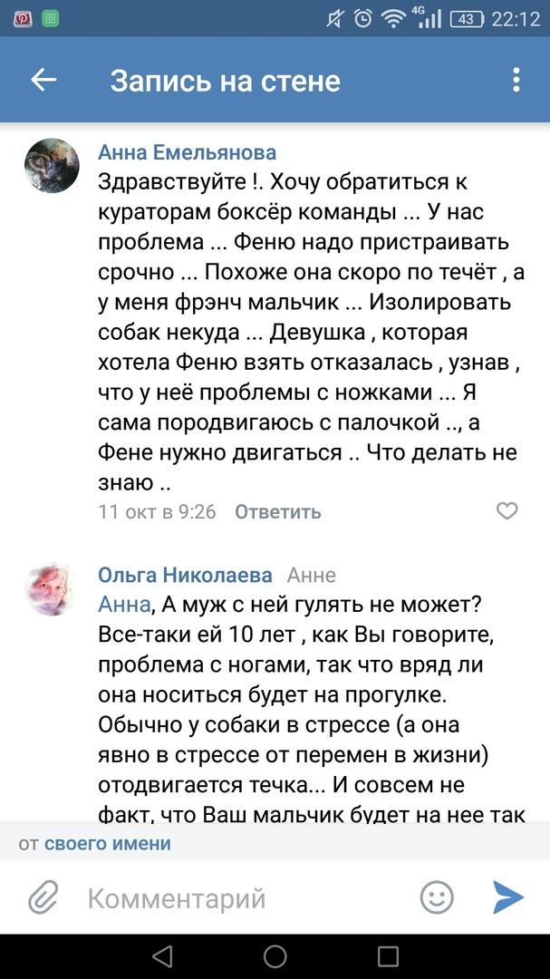 Москва, Офента, сука, 25.02.2008г.р. 3UkPmMSSnbM