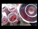 Как приготовить компот из ЧЁРНОЙ и КРАСНОЙ СМОРОДИНЫ на зиму