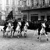 Казачьи конные пробеги