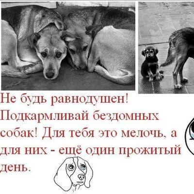 Ангелина Черкас, 10 февраля , Минск, id152826675