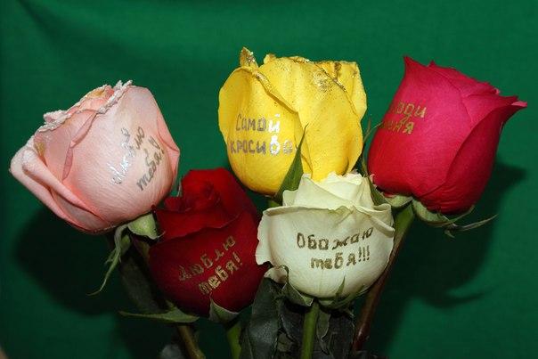 говорящие цветы фото:
