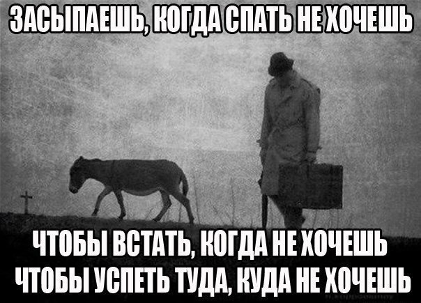 По душе ВУАХАХАХА))