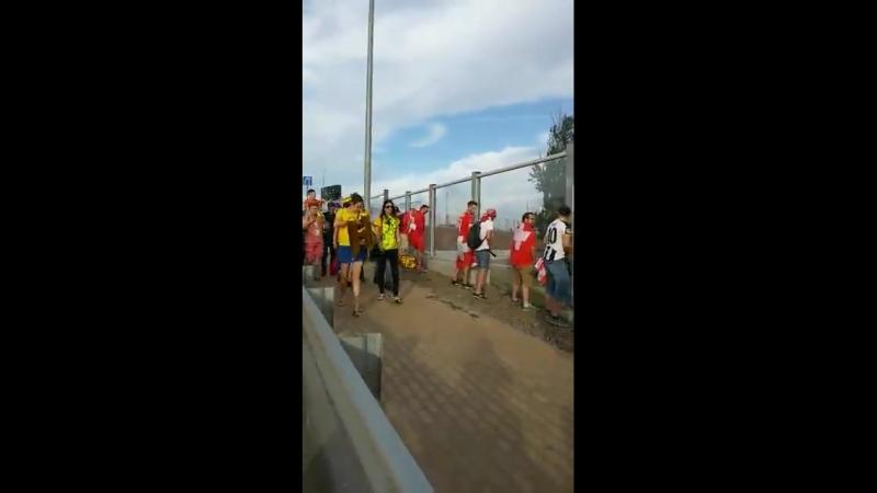 Ростов чм-18, Швейцария-Бразилия, швейцарские болельщики ссут после матча